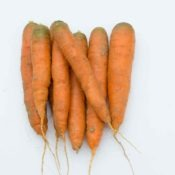 carotte-dsc_7480_26909568222_o