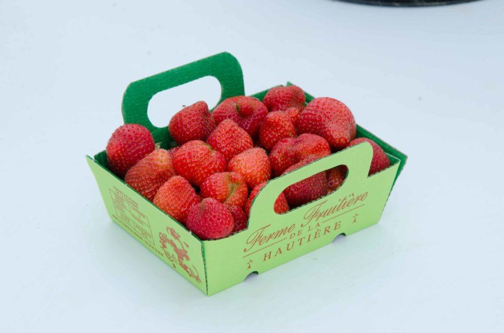 fraise--capela---dsc_7422_26935261591_o