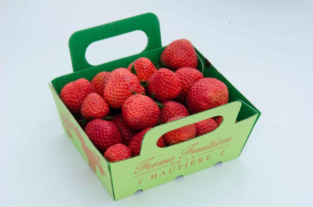 fraise-dely---dsc_7430_26935268141_o