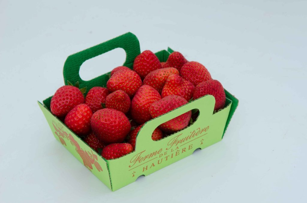 fraise-dream--dsc_7438_26909547122_o