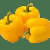 Poivron capsicum_yellow